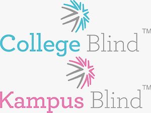 College Blinds and Campus Blinds, Interlace Blinds, Drawing on Experience, blind and curtain systems