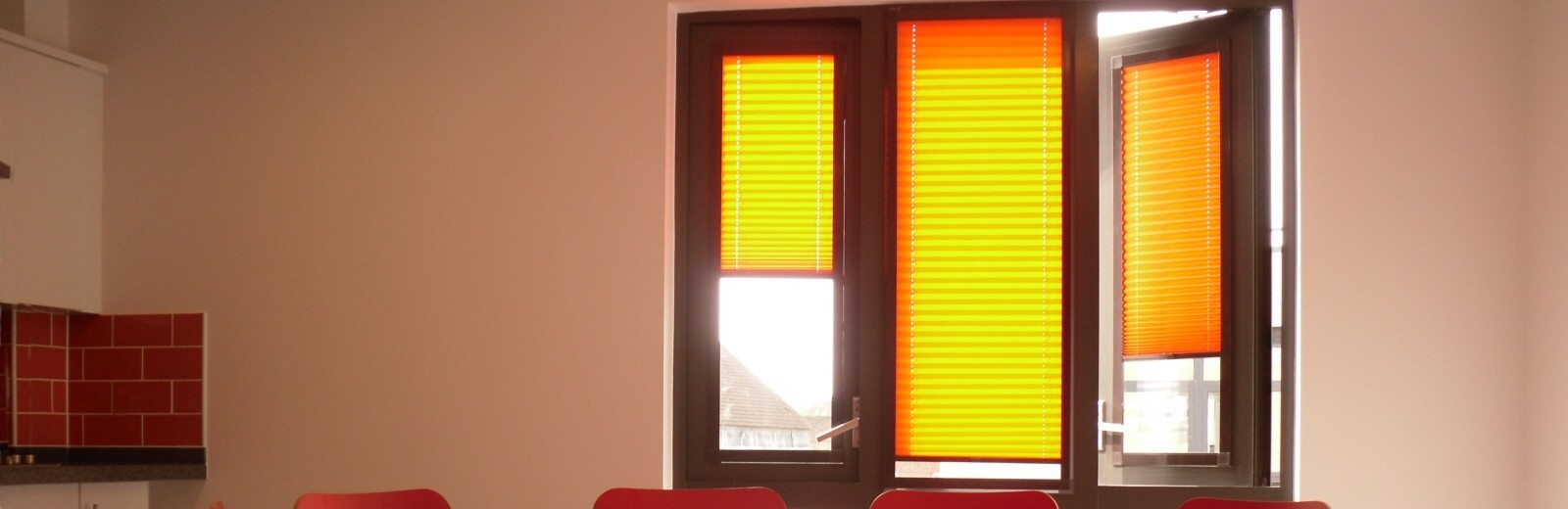 2000 Series Pleated Blinds